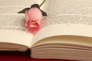 Une tradition catalane :offrir une rose avec un livre Source : http://litteraturetheatretechnologies.blogspot.ca